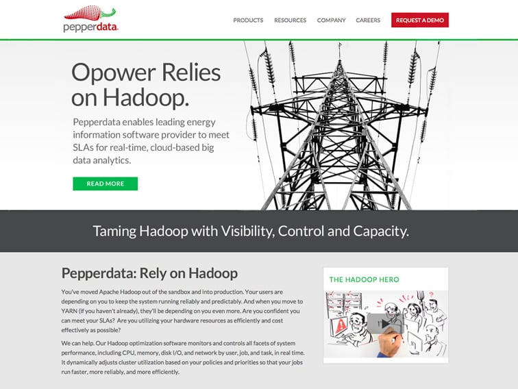 Pepperdata Wordpress Website