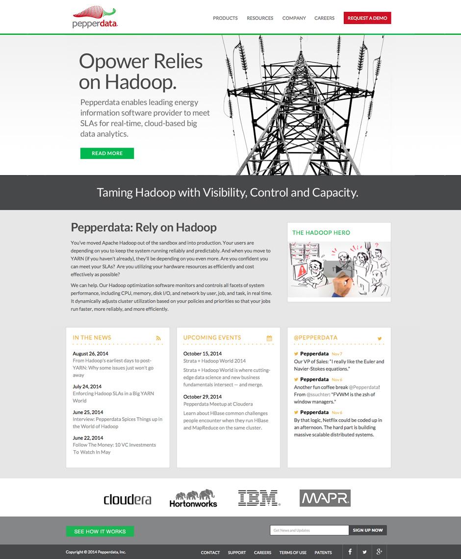Pepperdata Website Homepage