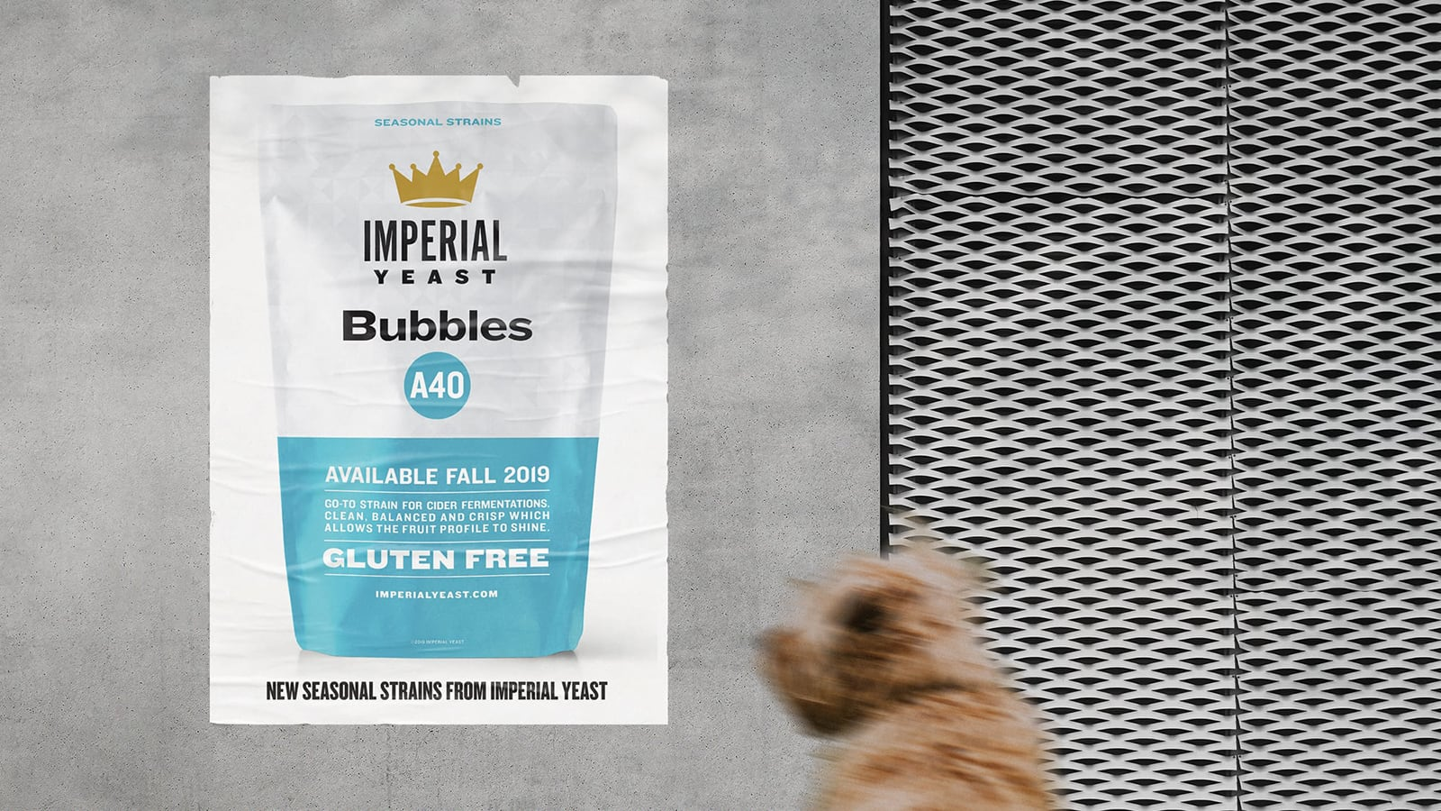 Imperial Gluten Free Yeast Bubbles Poster